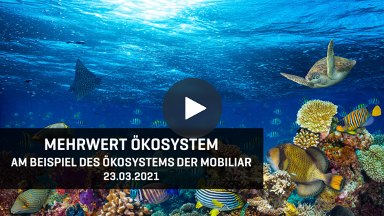 Video Mehrwert Ökosystem - Webinar 1